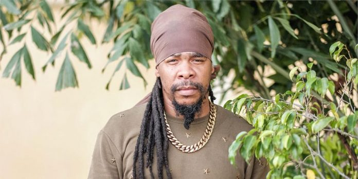 Turbulence Reggae Artist