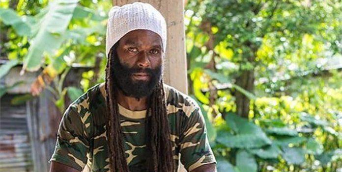 Taffari Reggae Inna My Soul